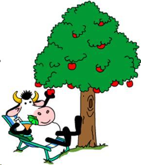 low-hanging-fruit-jeejee-saafir